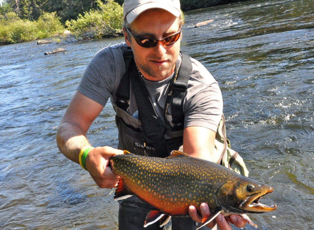 Labrador brook trout fishing remote fly in fishing lodge for Maine state fish