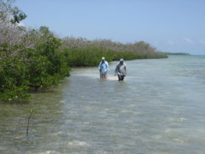 Cuba Fly Fishing for Tarpon, Bonefish and Permit